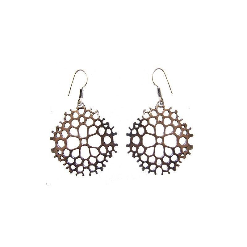 Silvered Earrings