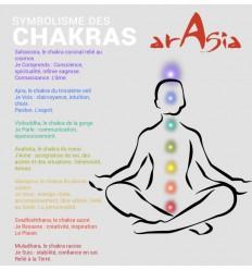 Pendientes 7 Chakras Arasia