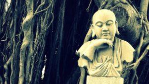 bouddha banyan
