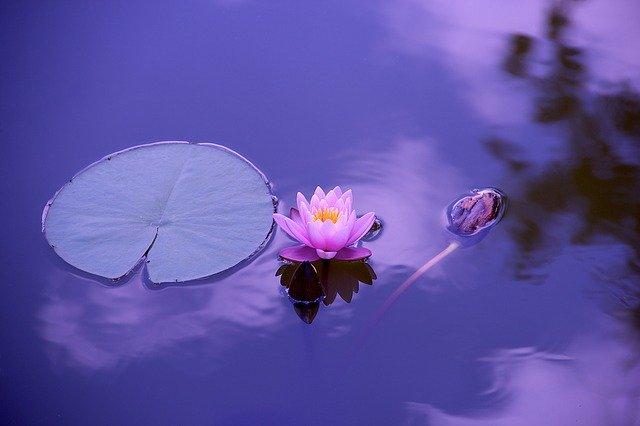 Quand le corps est correctement oxygéné, l'esprit retrouve sa paix et sa sérénité