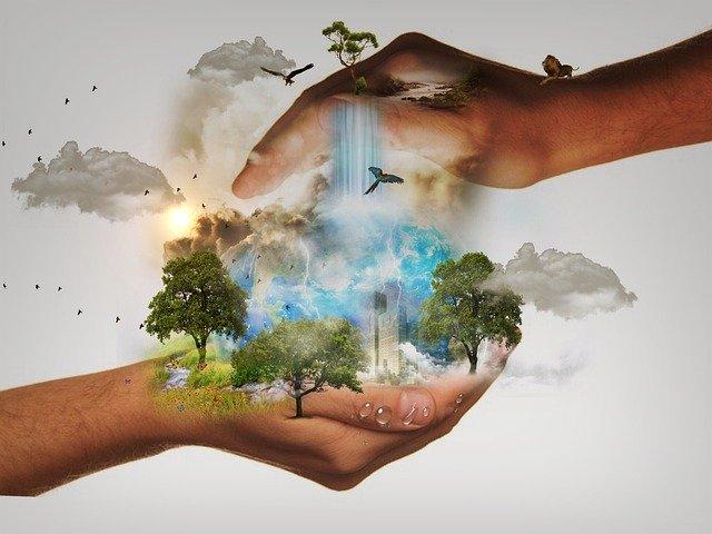 Cada vez hay más defensores del medio ambiente, apegados a los valores de compartir y preservar la biodiversidad. La batalla nos concierne a todos. Necesitamos pensar en las generaciones futuras.