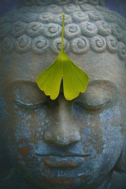 Pour les bouddhistes, le gingko biloba est symbole d'amour, de longévité, de chance et de protection