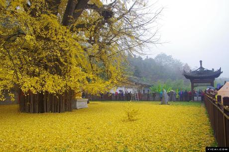 montagnes de Zhongnan - spectacle de toute beauté
