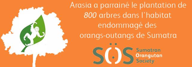 Arasia a parrainé la plantation de 800 arbres