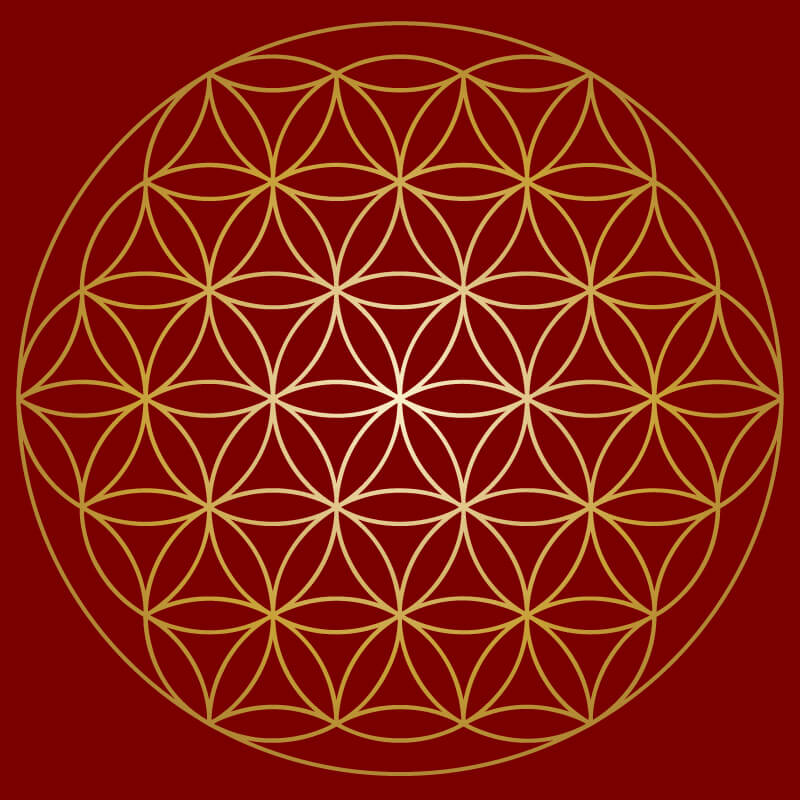 flower of life -Arasia