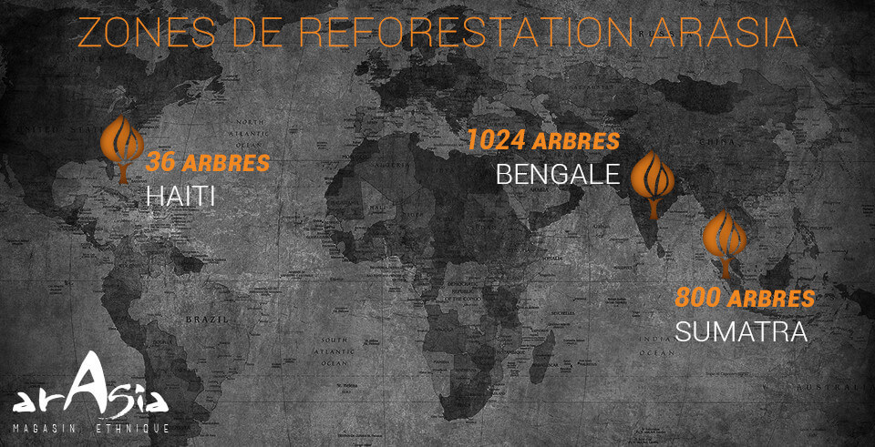 reforestation arasia 2020