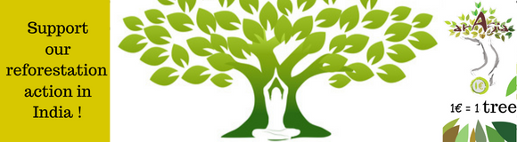Arasia support reforestation action in India