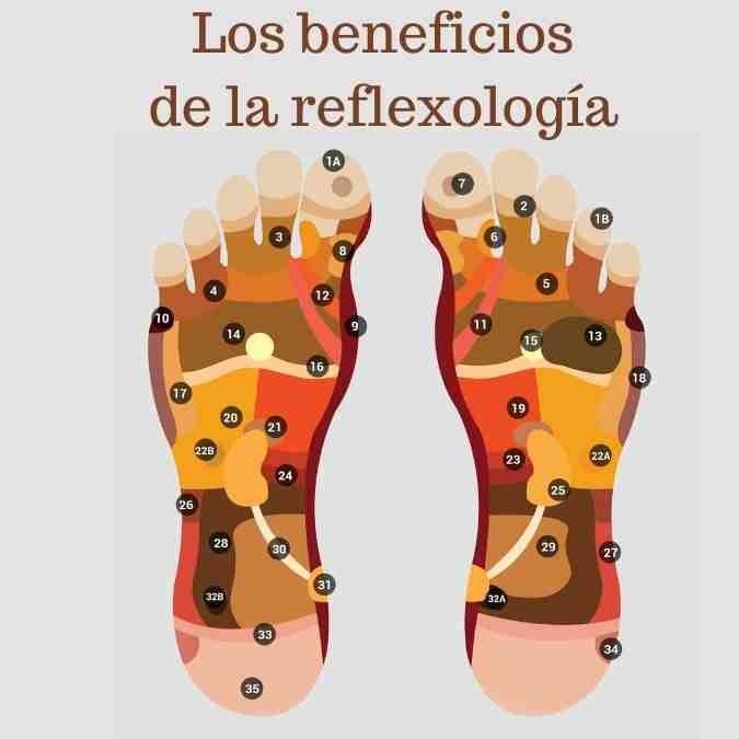 125,59,44|Reflexologia